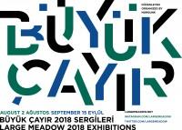 http://www.mars-istanbul.com/files/gimgs/th-40_Buyuk_Cayir_afis.jpg